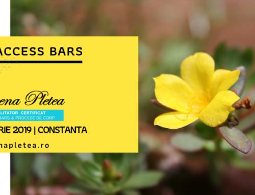 Curs Access Bars | 10 Februarie, Constanta