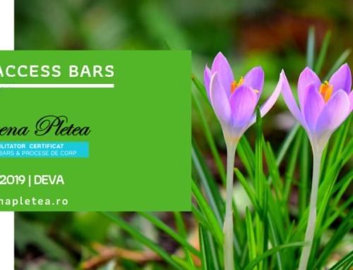 Curs Access Bars | o6 Aprilie, Deva