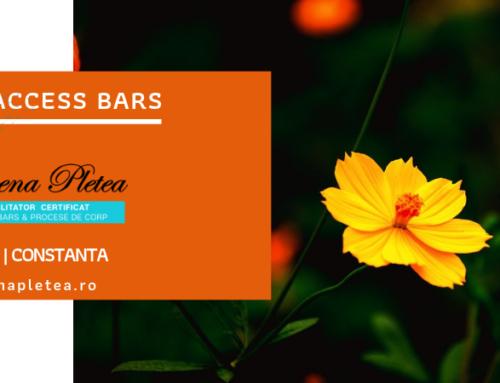 Curs Access Bars | 11 Mai, Constanta