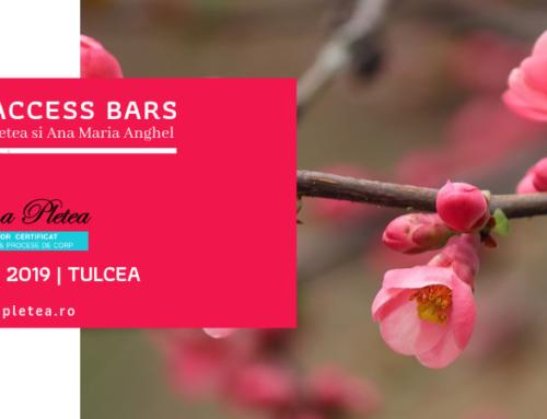 Curs Access Bars | 21 aprilie, Tulcea