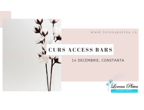 Curs Access Bars | 14 Decembrie, Constanta