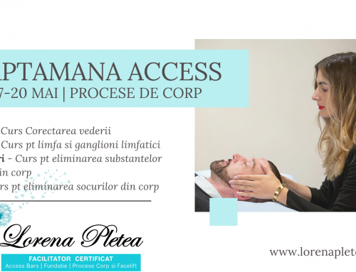 Saptamana Access 17-20 mai | Procese de corp