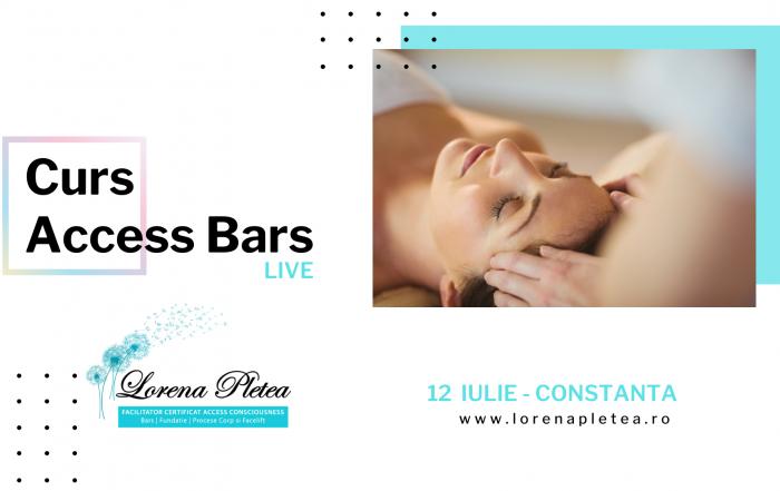 Curs Access Bars – 12 Iulie Constanta